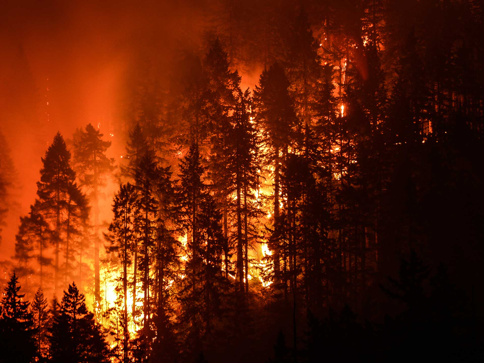 California's delayed rainy season is prolonging the fire season by a month